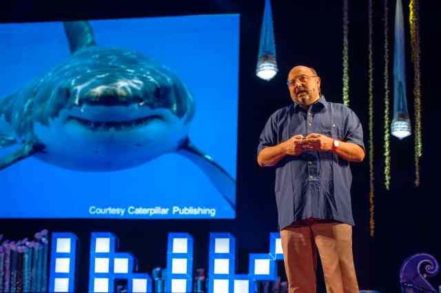 David Gallo and Shark